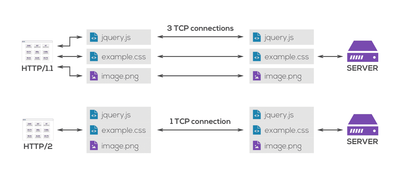 HTTP/1.1 and HTTP/2 connections